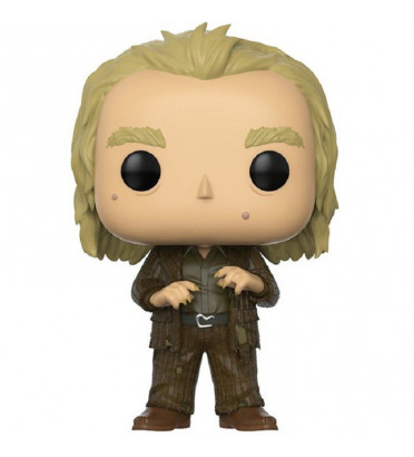 PETER PETTIGREW / HARRY POTTER / FIGURINE FUNKO POP